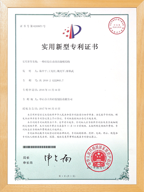 立科精密-自动胶模专利认证